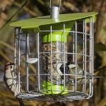 Roundhaus Bird Seed Feeder – Lime Green
