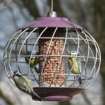 Round Helix Nut Bird Feeder – Aubergine