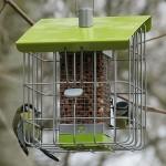 Geohaus Nut Bird Feeder – Lime Green