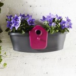 Bird Box Planter