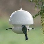 Birdball Seed Feeders