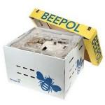 Beepol Bumblebee Hive