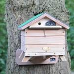 Beepol Bumblebee Tree Lodge