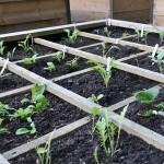 Harrod Raised Bed Planting Grid