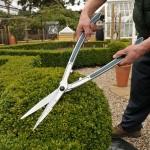 Topiary Hedge Shears