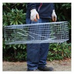 Humane Rabbit Trap