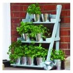 Plant Theatre Galvanised Pots