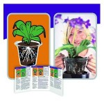 Plantarium Root Care Pots