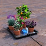 Easy2go Holiday Watering Kit