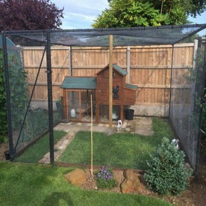 Steel-Poultry-Cage.jpg