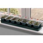 Self-watering Super 7 Propagator