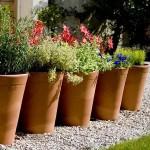 Large Herb Garden