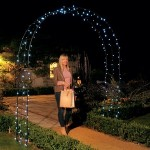 Harrod Vintage Wire Arch – Matt Black
