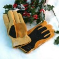 Winter-Touch-Gloves_large_2.jpg